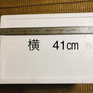 発泡スチロール箱(*^ω^*)