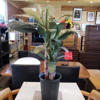(造花)観葉植物・3