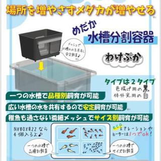 【新品未使用】メダカの水槽分割容器「わけぷか」