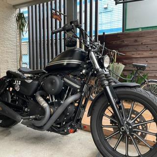Harley-Davidson XL883N スポーツスター ア...