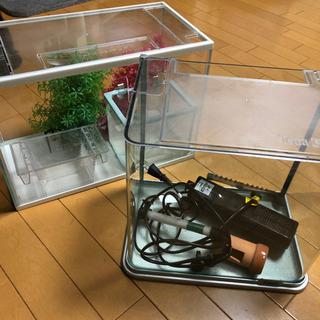 【ネット決済】30cm、40cm水槽
