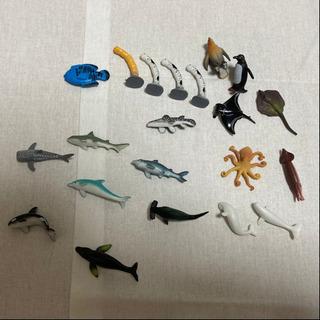 【無料】魚のおもちゃ 21体