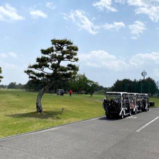 ゴルフラウンド 6/28(月)ナイター
