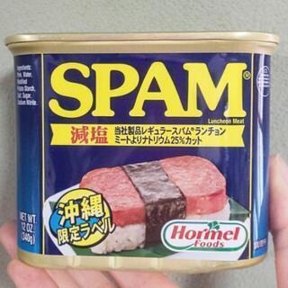 ‼️本場沖縄の味‼️スパム ポーク缶 減塩 340g