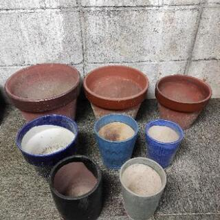 各種植木鉢あげます。