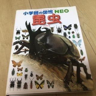 小学館の図鑑NEO昆虫 こども大百科キッズペディア大図解