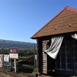 【東京都練馬区】農園農業のお手伝いメンバー募集
