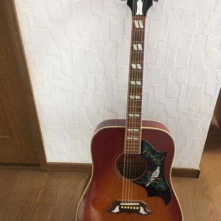ギブソンギター ハミングバードDove