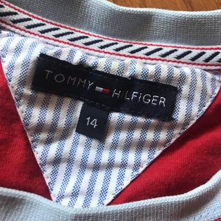 トミヒルガー Tシャツ