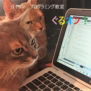 【横浜 】パイソン?ぐるオン!~プログラミング体験を人気のパイソ...