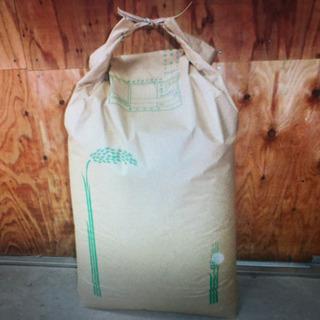 美味しい丹波篠山産こしひかり 30kの玄米
