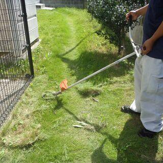 敷地清掃・共用部清掃 長期アルバイト