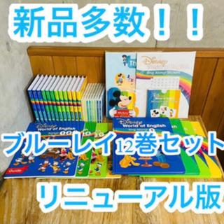 【破格】ディズニーワールドシステム シングアロング dvd