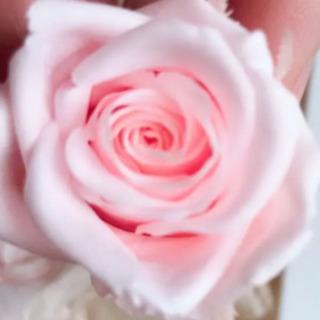市販580円の花を100円にします(プリザーブドフラワー)
