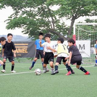 7月10日(土曜)サッカー 小学生4.5.6年生対象 ゲーム会開催‼️ - スポーツ
