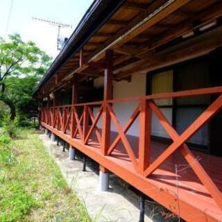 屋久島でヨガ(セラピー)教室をして暮らそう!