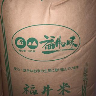 (新米)令和2年度福井県産 コシヒカリ 玄米 30キロ