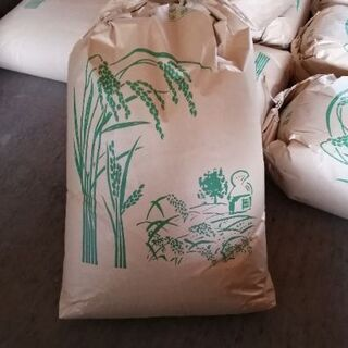 令和2年 徳島県産もち米 玄米30Kg