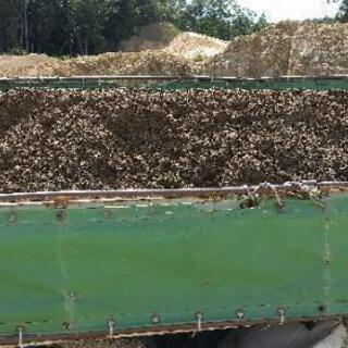 畑土、腐葉土たっぷり!そのまま畑で使えます!