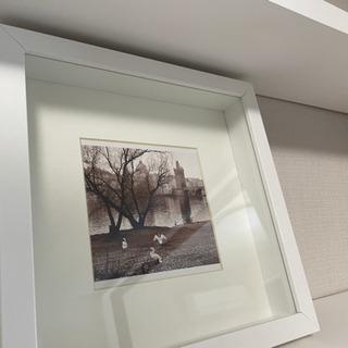 ウォールアート・プラハのきれい写真