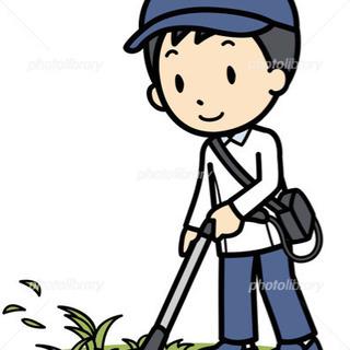 【一坪100円!】草刈承ります!