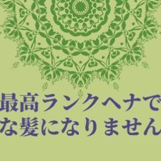 最高ランク ヘナ【2500円】サラツヤ美髪に♪