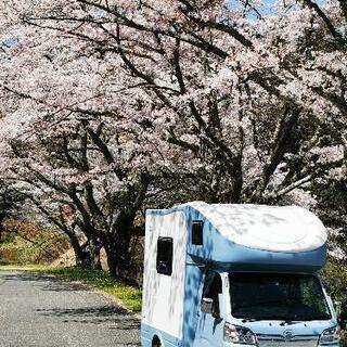 【ネット決済・配送可】軽キャンピングカーjpstar h-1値下...