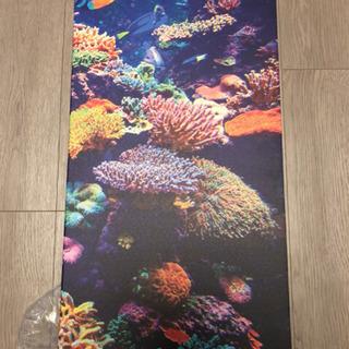 壁絵 珊瑚 深海魚 イギリス輸入