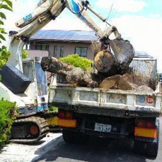 巨木を引き受けます!㈱レンタルハンディマン