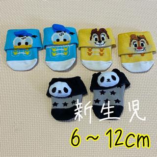ベビー靴下 新生児 6cm~12cm 3足セット ディズニー パンダ