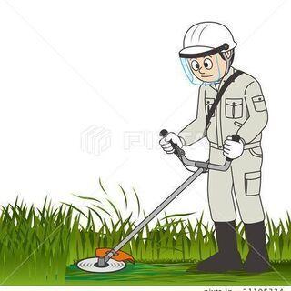 草刈りお手伝いします