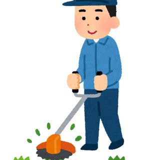🔶草刈り🔶庭木の剪定🔶ご相談ください‼
