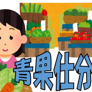 農作物の包装、袋詰めおよび商品陳列作業