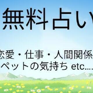 【期間限定】無料占い☆24時間以内に鑑定!