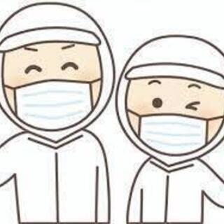 【各シフト増員!!】西区八軒 食品製造工場での盛り付けのお仕事!!