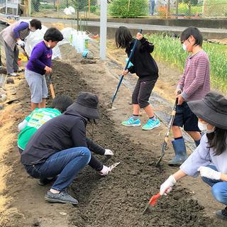 こども食堂農園 管理・農業ボランティア募集(奈良県大和郡山…