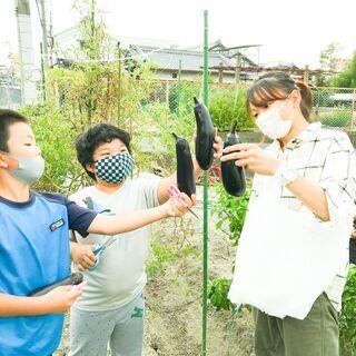 こども食堂農園 管理・農業ボランティア募集(奈良県大和郡山市) - 大和郡山市