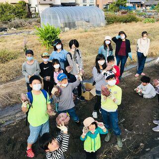 こども食堂農園 管理・農業ボランティア募集(奈良県大和郡山市) - 手伝って/助けて