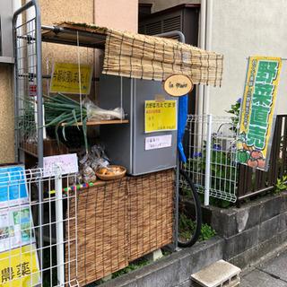 無農薬 直売所(神奈川区でも引き取り可能)