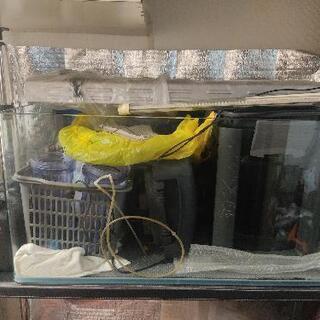 90水槽一式+飼育用品 水草 大型魚 繁殖用 引き取り限定