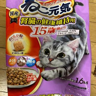 【ネット決済】猫の餌