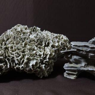 ★ ビンテージ 白珊瑚 石置物 2ヶセット オブジェ ★