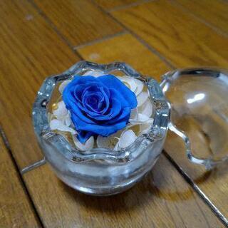 ミニミニプリザーブドフラワー(薔薇・ブルー)