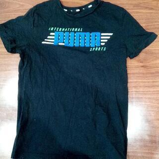 プーマTシャツ160