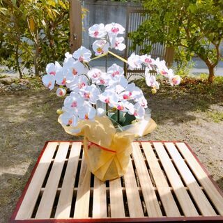 【ネット決済・配送可】中古 造花の胡蝶蘭 消臭・抗菌効果