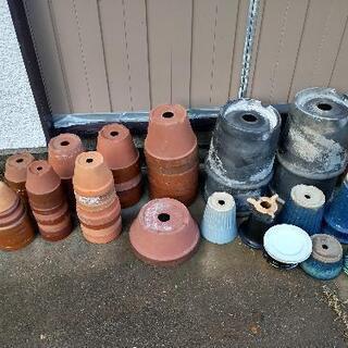 無料★植木鉢まとめて引き取り希望★近隣地域格安配送可能