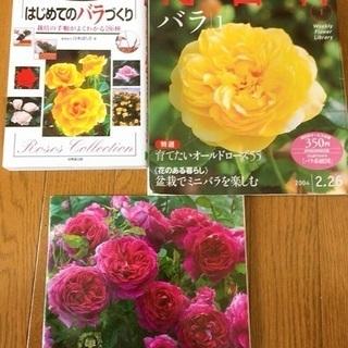 薔薇の本 中古