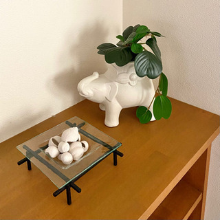 象のプランターポット 陶器製