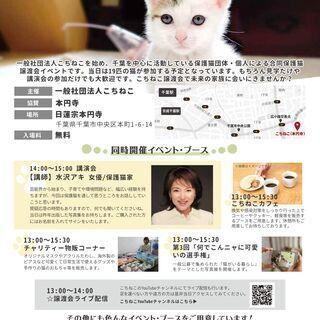 【ゲスト:水沢アキさん】6月20日(日)千葉市保護猫譲渡会