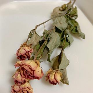 【ネット決済】かわいい♡ドライフラワー 薔薇